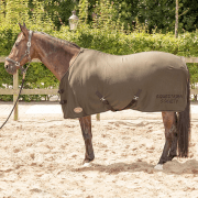 Harry's Horse Forest night Jersey fleece/cooler deken - Groen, 195